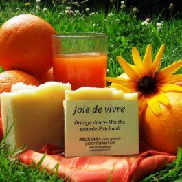 Joie de vivre : Orange douce - Menthe poivrée - Bois de cèdre - Jus de carotte